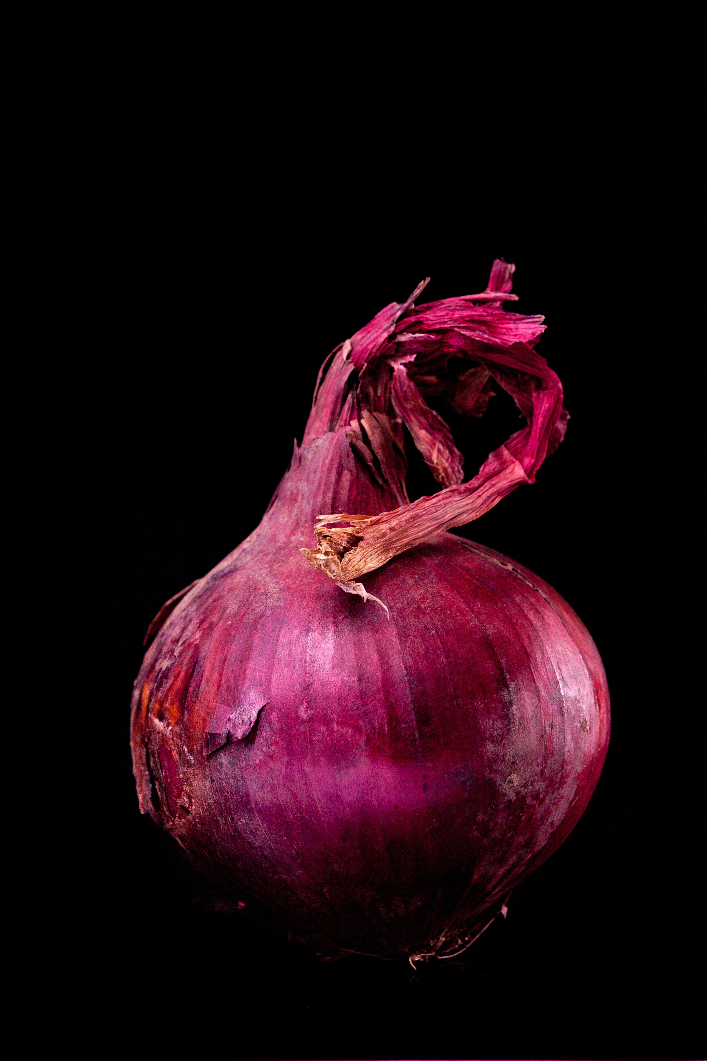 An image of the million dollar onion. Or so. Canon EOS 450d + 70-200 2,8 L + two flashes. Join the million dollard food army and create million dollar food pictures. Why? Just for fun! Follow me on instagram (mypixelsat) and my blog www.mypixels.at